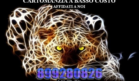 Leopardo Fantasy